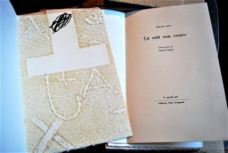 Иллюстрированная Книга Tapies - Ça Suit Son Cours.