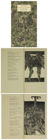 Иллюстрированная Книга Baskin - A Primer of Birds