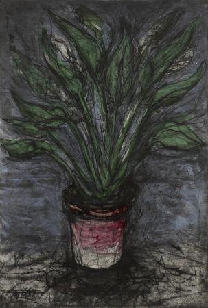 Многоэкземплярное Произведение Dine - A Well Painted Strelitzia (D'O & F. 73)