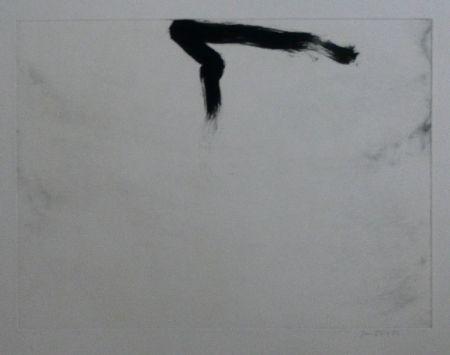 Офорт И Аквитанта Bird - Abstract 11