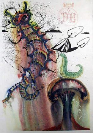 Литография Dali - Advice from a caterpillar