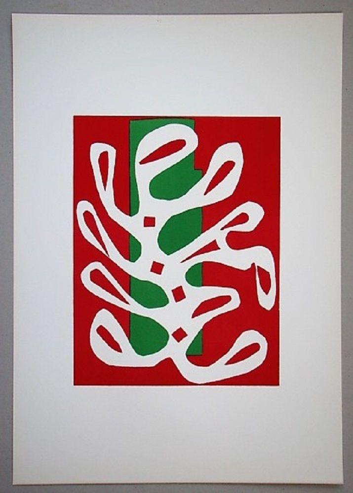Литография Matisse - Algue sur fond rouge et vert