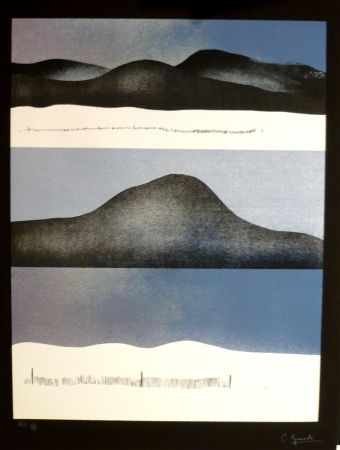 Сериграфия Aguadé - Analitica 10