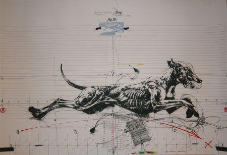Литография Velickovic - Animals in motion