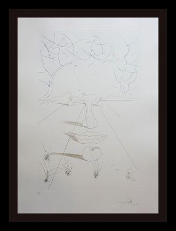 Гравюра Dali - Aurelia Visage Surrealiste