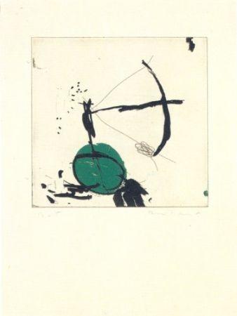 Гравюра Riera I Aragó - Avió petit roda verda