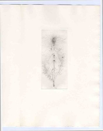 Иллюстрированная Книга Bellmer - Bataille (Georges). Madame Edwarda.