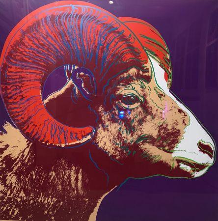 Сериграфия Warhol - Bighorn Ram Tp (Fs Ii.302)
