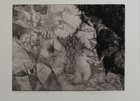 Гравюра Sander - Bild Nr. 14 / Picture No. 14