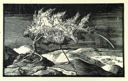 Гравюра На Дереве Schönleber - Blütenbaum im Donautal (Flowering tree in the Danube valley)