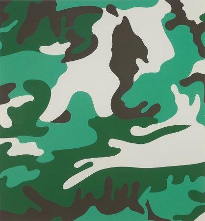 Сериграфия Warhol - Camouflage (FS II.406)
