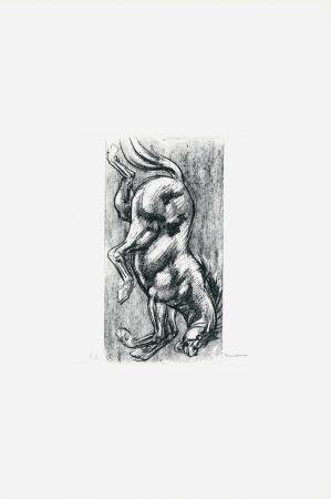 Литография Messina - Cavallo