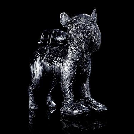 Многоэкземплярное Произведение Sweetlove - Cloned black Griffon Bruxellois with pet bottle