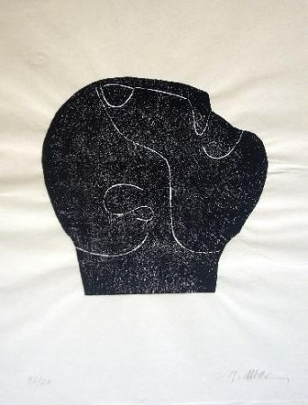 Иллюстрированная Книга Ubac - Comme un sol plus obscur