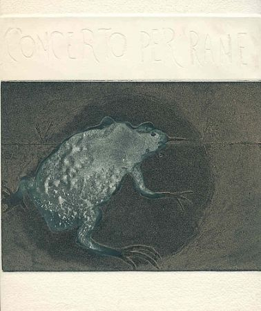 Иллюстрированная Книга Guarienti - Concerto per rane