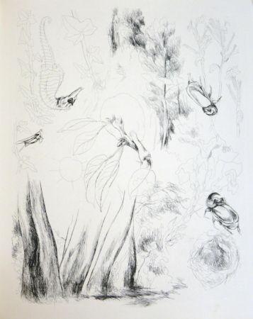 Иллюстрированная Книга Levy - De la nature (De Rerum Natura)