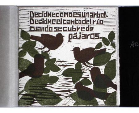 Иллюстрированная Книга Brancaforte - Decidme cómo es un árbol