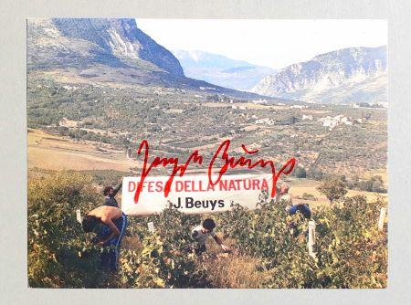 Гашение Beuys - Difesa della natura