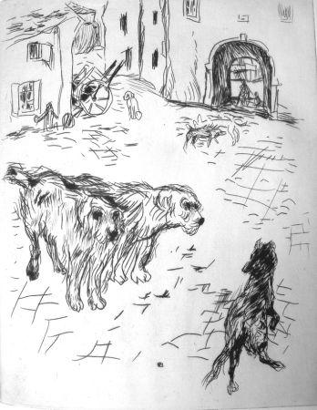 Иллюстрированная Книга Bonnard - Dingo