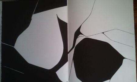 Иллюстрированная Книга Palazuelo - DLM 137 LUXE.