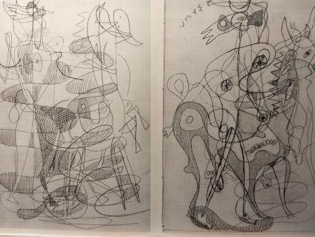 Иллюстрированная Книга Braque - DLM 71-72