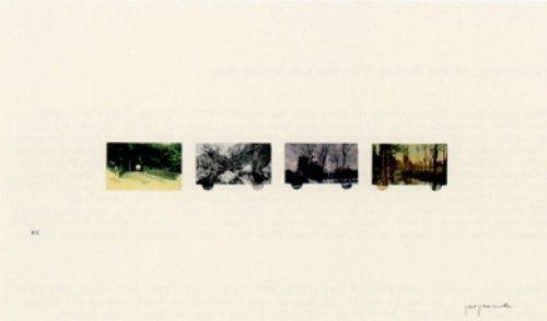 Литография Perejaume - El bosc a casa-2