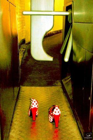 Фотографии Bohorquez - Exit