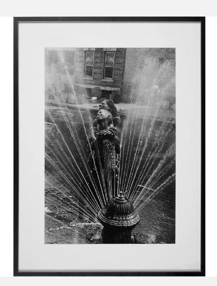 Многоэкземплярное Произведение Freed  - Fire Hydrant, Harlem