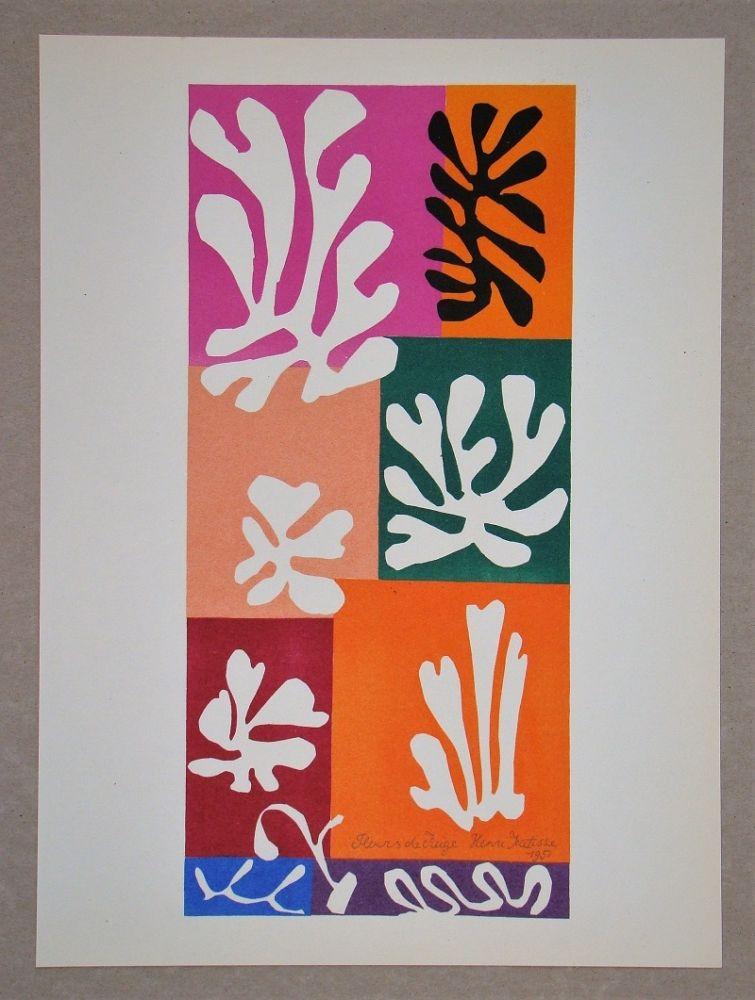 Литография Matisse (After) - Fleur De Neige - 1951