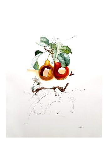 Литография Dali - Flordali - Fruits Troués