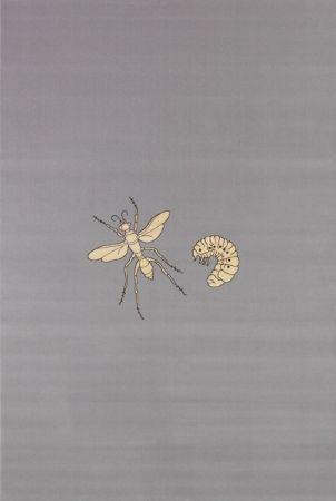Многоэкземплярное Произведение Fabre - Fly