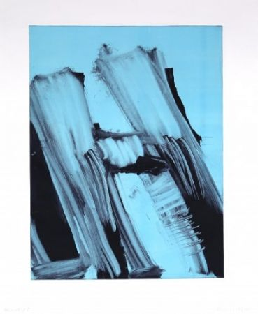 Монотип Faldbakken - Hilux Variations 11