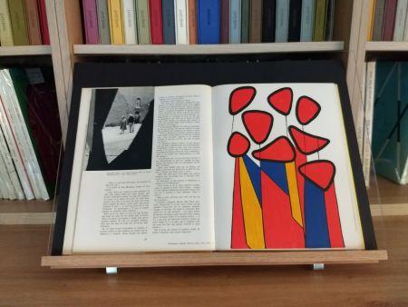 Иллюстрированная Книга Calder - Hommage