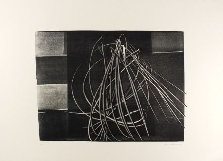 Литография Hartung - L-4-1976