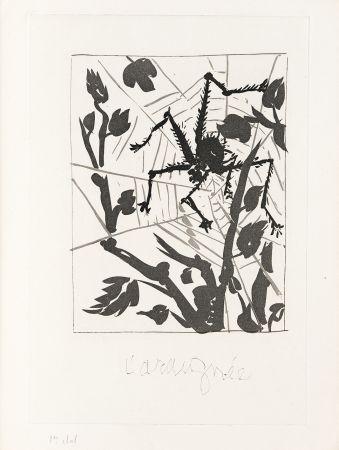 Нет Никаких Технических Picasso - L' Araignée