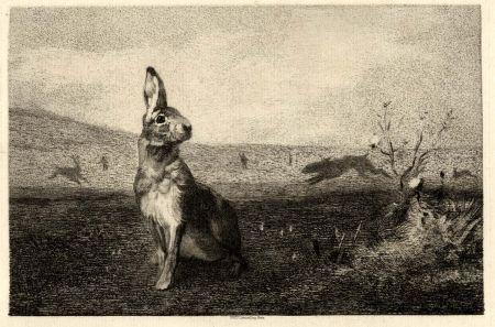 Гравюра Bracquemond - La Lièvre (The Hare)