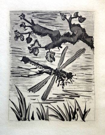 Офорт И Аквитанта Picasso - LA LIBELLULE