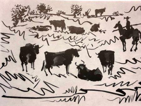 Гравюра Сухой Иглой Picasso - La Tauromaquia
