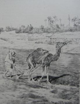 Литография Lunois - Laboureur du Kef