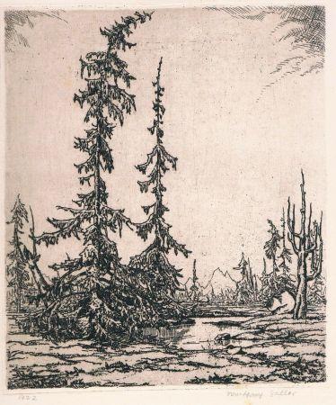 Гравюра Zeller - Landschaft