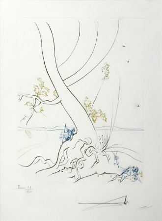 Офорт Dali - L'ARBREDE CONNAISSANCE (THE TREE OF KNOWLEDGE)