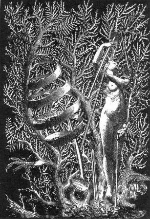 Иллюстрированная Книга Ernst - Lely (Gilbert). Je Ne Veux Pas Qu'On Tue Cette Femme.