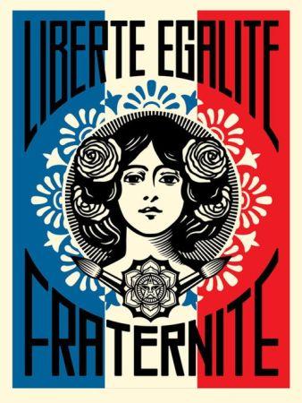 Гашение Fairey - Liberté, Égalité, Fraternité