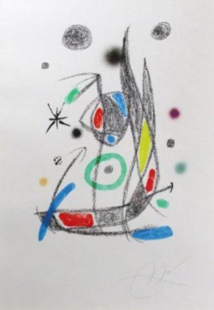 Литография Miró - Maravillas Con Variaciones Acrósticas En El Jardín De Miró - Plate 14