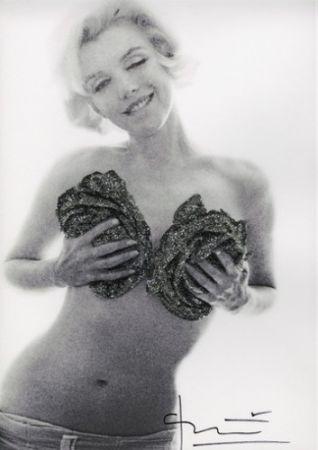 Фотографии Stern - Marilyn Black silver wink roses