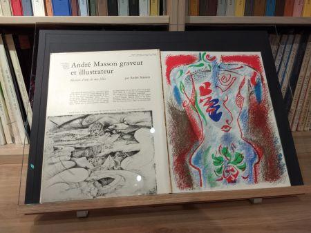 Иллюстрированная Книга Masson - No 38