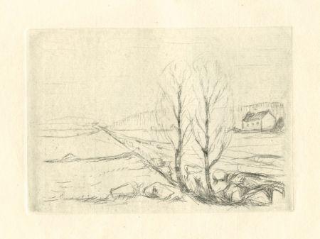 Гравюра Сухой Иглой Munch - Norwegische Landschaft / Norwegian Landscape