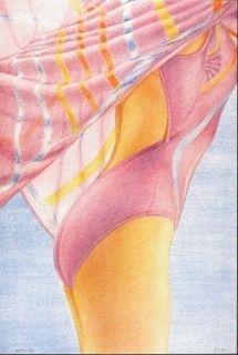 Литография Kacere - Olympique 92