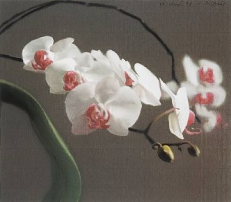 Гашение Richter - Orchid IV