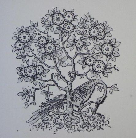 Гравюра На Дереве Grasset - Ornements typographiques